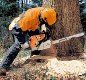 Cold Weather Chainsaw Operation