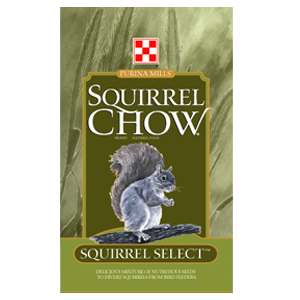 SquirrelChow