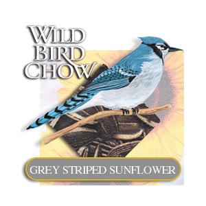 WildBirdGreyStripedSunflower.jpg
