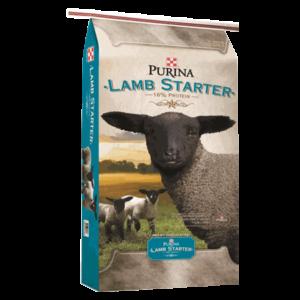 Purina Lamb Starter