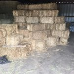 Cold Weather Supplies: Straw and Hay Bales